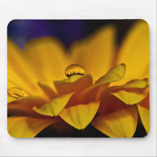 Drop of Water with Reflection of Gerbera Daisy Mouse Pad