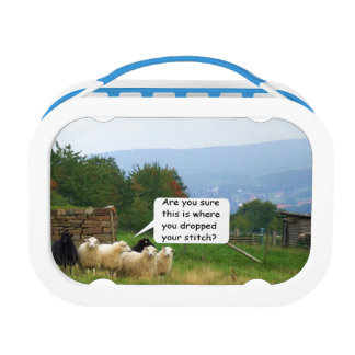 Drop Stitch Sheep Lunch Box