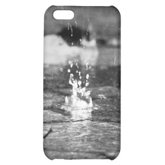 Dropfalls & Leaves on Brick iPhone Case iPhone 5C Covers
