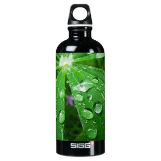 Droplets on Green Plant SIGG Traveler 0.6L Water Bottle