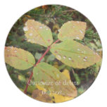 Drops of Autumn; Customizable Party Plate