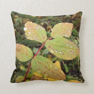 Drops of Autumn; No Text Pillows