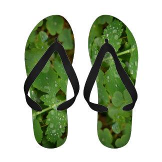 Drops Of Dew Sandals