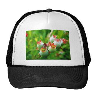 Drops Of Hope Trucker Hat