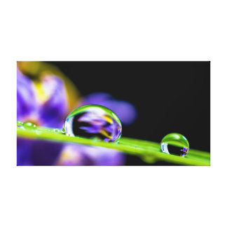 Drops of water canvas print