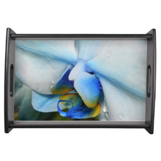 Drops on Blue Orchid Serving Tray