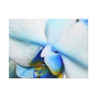 Drops on Blue Orchid Wrapped Canvas Stretched Canvas Print