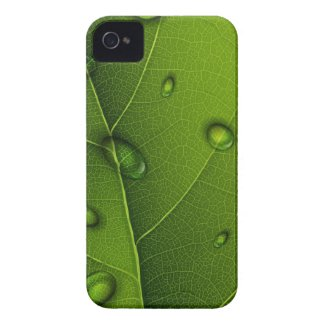 Drops On Green Leaf iPhone 4 Covers