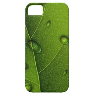 Drops On Green Leaf iPhone 5 Covers