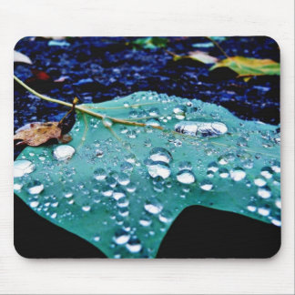 Drops On Leaf 4 Mouse Pad