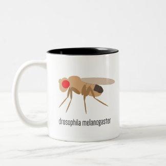 Drosophila Coffee Mug