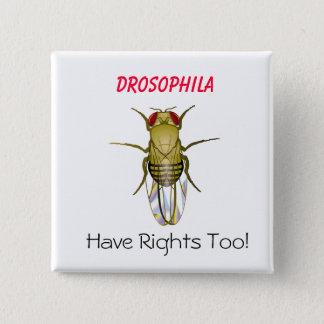 DROSOPHILA, Drosophila , Have Righ... - Customized Pinback Button