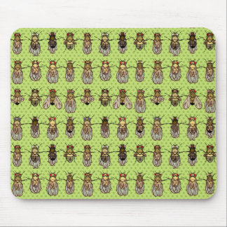 Drosophila Fruit Fly Genetics - mutants - Lime Mouse Pad