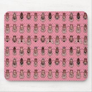 Drosophila Fruit Fly Genetics - mutants - Pink Mouse Pad