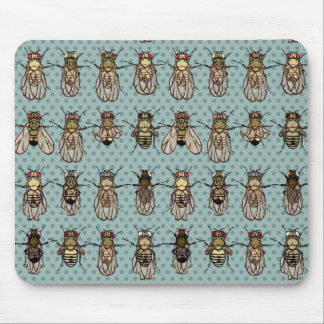 Drosophila mutants mousepads