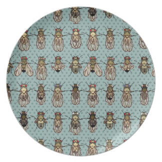 Drosophila mutants plate