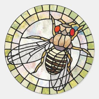 Drosophila Pegatinas Redondas