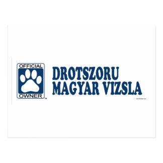 Drotszoru Magyar Vizsla Blue Postcard