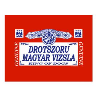 Drotszoru Magyar Vizsla Postcard