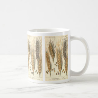 Drought Resistant Wheat Plant, Vintage Agriculture Coffee Mug