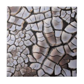 Drought Ceramic Tiles