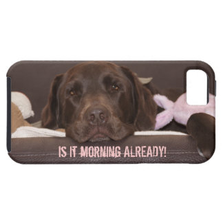 Drowsy Chocolate Lab Photo Close Up iPhone SE/5/5s Case