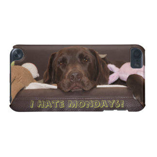Drowsy Chocolate Lab With Toys iPod Touch 5G Cover