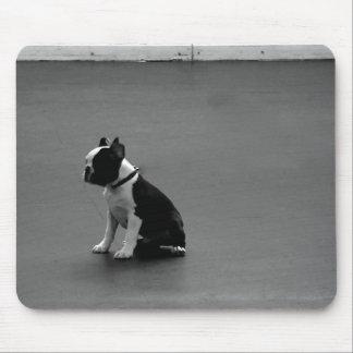 DRU puppy boston terrier Mouse Pad