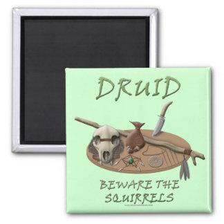 Druid: Beware the Squirrels Magnets