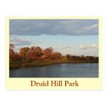 Druid Hill Park Post Card