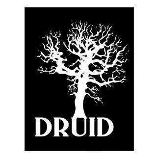 Druid Postcard