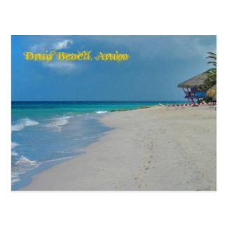 Druif Beach Aruba Postcard
