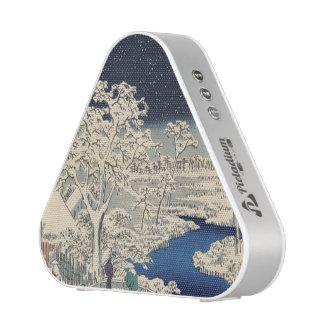 Drum Bridge at Meguro and Sunset Hill. Bluetooth Speaker