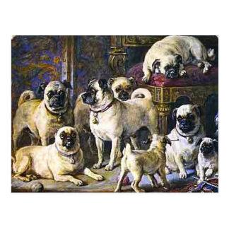 Drumpellier Pugs Postcards