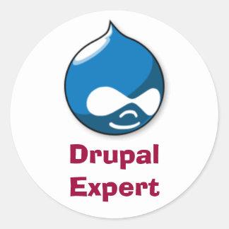 Drupal Expert Classic Round Sticker