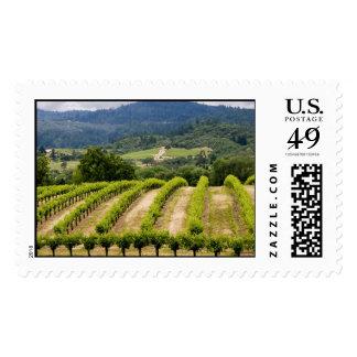 Dry Creek Vineyards Stamp