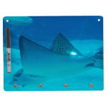 dry erase Dry-Erase boards - Customized