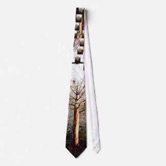 Dry Ferula Plant Neck Tie