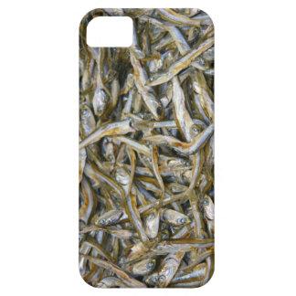 dry fish iPhone SE/5/5s case