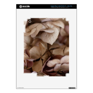 Dry Flowers Skins For iPad 3