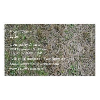 Dry Grass Background Texture Double-Sided Standard Business Cards (Pack Of 100)