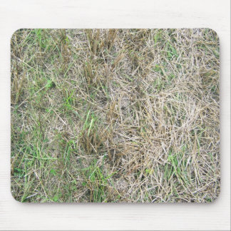 Dry Grass Background Texture Mouse Pad