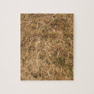 Dry grass in a meadow jigsaw puzzle
