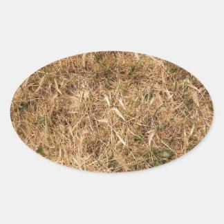 Dry grass in a meadow oval sticker