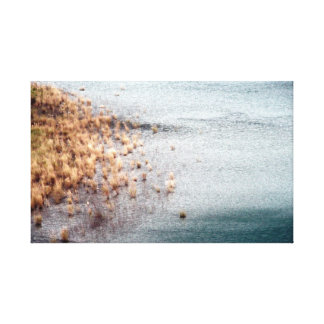 Dry Grass in Calm Water/Peaceful Day Canvas Print
