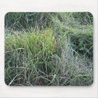 Dry grass in the water mouse pad