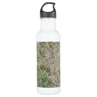 Dry Grass Seamless Texture 24oz Water Bottle