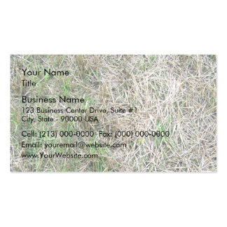 Dry Grass Seamless Texture Double-Sided Standard Business Cards (Pack Of 100)