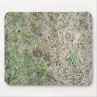Dry Grass Seamless Texture Mouse Pad