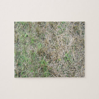 Dry Grass Seamless Texture Jigsaw Puzzle